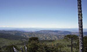 Cordillera_de_Nahuelbuta